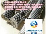钢芯铝绞线 铝包钢芯铝绞线 铝包钢绞线生产厂家直销