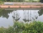 沙河仓库 、场地、苗圃、鱼塘、养殖棚便宜出租