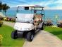成都酒店布草车厂家-供应专业的电动高尔夫球车