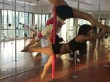 沧州零基础钢管舞 爵士舞 领舞 舞蹈培训包学会