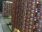 不限购惠州十里银滩电梯洋房16万8起,投资居家海景沙滩楼盘银滩花