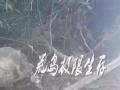岳阳野外荒岛生存培训-影子412基地