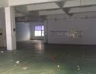 坂田一楼正规厂房800平1000平米出租,空地大