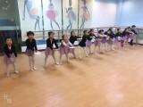 龚家湾少儿艺术培训,少儿舞蹈,跆拳道,兰港怡园附近