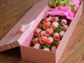 沈阳同城鲜花速递玫瑰百合康乃馨鲜花礼盒包月定制