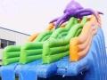 成人水上乐园设备,支架水池,水上冲关,水上漂浮物,水上攀岩等等