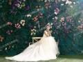 泰山花海摩玛梦想城最大的婚拍基地招商加盟啦