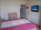 文化路 都市A座 1室 1廳 43平米 整租