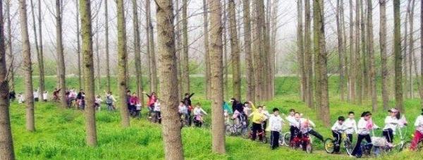 杭州周边放松型企业团队骑马烧烤CS皮划艇拓展旅游