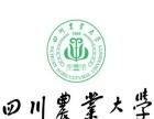 四川农业大学在职人员学历提升(专科、本科)内蒙古地区招生简章