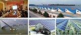 核新电力太阳能光伏发电节能减排 科技创新显威环保益民