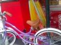 捷安特变速自行车