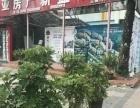 三亚湾 蓝色海岸三期中门 摊位柜台