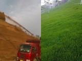 昆明供應礦山綠化植草噴播機340大馬力射程遠
