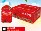 北京米奇消食乐京品果园山楂汁饮料期待我们有火花的碰撞