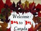 加拿大住家保姆移民