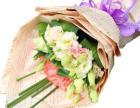 情人节,大庆鲜花速递五八八-八零零二