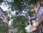 省医 院旁,高教小区,精装修三房出租,超划算的租房