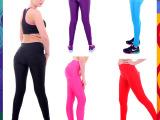 优妮翔外贸爆款女士运动打底裤健身房瑜伽提