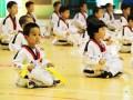 北京通州梨园龍圣搏击俱乐部跆拳道散打泰拳可免费体验试学