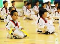 大兴专业少儿跆拳道培训班 基础班 专业教练免费试听
