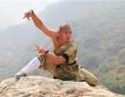 嵩山少林寺武术学校文化课和武术课教学课程是怎么安排的