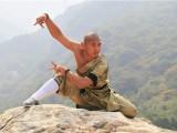 嵩山少林寺武术学校文化课和武术课教学课程是安排的
