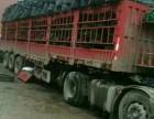 梁平县专业调回程车大件运输物流公司货运部信息部配货站