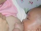 无痛开奶、通乳、催乳、回奶、乳腺炎 月嫂 育婴师