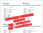 澳洲签证一手办理 前期0费用 落地付款