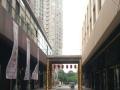 一楼街铺,旺,消费能力高,档次高