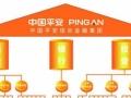 中国平安综合金融 保险 车险 贷款 寿险 大病儿童