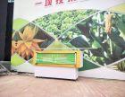 深圳启动道具活动物料暖场启动仪式多米诺推杆启动台启动球租赁