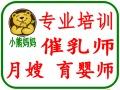 南海哪里有月嫂培训 育婴师培训桂城平洲 南海广场 万达广场