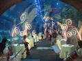 魔术主题婚礼,定制魔幻婚礼,绵阳魔术师,魔术表演