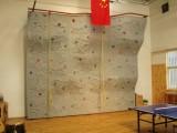 优质攀岩墙建造厂家 攀岩板生产厂家 质量优异价格合理