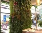 专业制作仿真植物墙 仿真绿植造景 仿真花艺