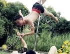 成都温江教练班钢管舞学校 职业钢管舞学校 唯美钢管舞学校