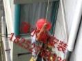厂房钢结构防腐刷漆彩钢瓦喷漆