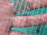 园艺用品家用塑料养殖网养鸡网 防护网 防鸟网 爬藤网 塑料网