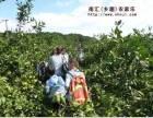 上海农家乐一日游 采葡萄摘桔子 钓鱼钓大闸蟹 享田园乐趣