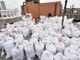 广州市黄埔区装修垃圾清运