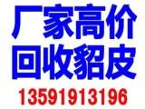 锦州回收貂皮衣服,锦州回收旧貂皮,高价回收二手貂皮
