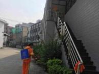 东城 虎门 万江 专业团队 壁纸清洗 开荒保洁除虫