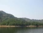 现有湖北东部大型水库中半岛和全岛招商开发或出租