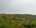 沂南依文 土地 100000平米