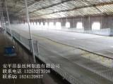 塑料平网 养鸡 鸭 鹅 养鱼专用塑料平网 厂家现货 超低价批发