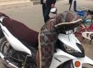 雅马哈u8摩托车5000元