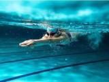 暑期游泳培训班招生中,名额不多了哦
