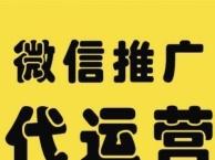 武清专业网站设计,优化,微信公众号平台推广开发